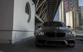 Wallpaper Alex Bazilev, BMW, before, photography, grille, photographer, auto, Alexander Bazilev, machine, photographer, BMW, Alexander Bazylev