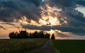 Wallpaper road, field, the sky, the sun, clouds, rays, mill, rape