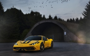 Picture the sky, birds, yellow, ferrari, twilight, Ferrari, yellow, 458 speciale