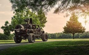 Picture Nature, Cars, Wrangler, Jeep, Rear, Off Road, FullMetalGunner