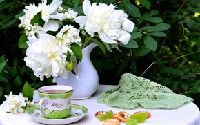 Picture summer, bouquet, still life, peonies, marmalade, drying, Jasmine, knitting, Cup. tea