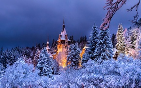 Picture winter, forest, the evening, Romania, Sinai, Peles castle