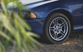 Picture auto, BMW, e39
