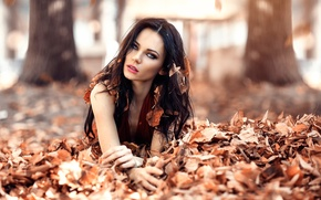 Picture autumn, leaves, girl, hair, awakening, Alessandro Di Cicco, Iced Eyes