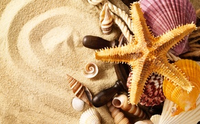 Picture sand, summer, rope, shell, starfish