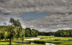 Picture field, the sky, clouds, trees, pond, the fence, meadow