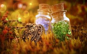 Wallpaper bokeh, buttons, grass, pendant, bottles