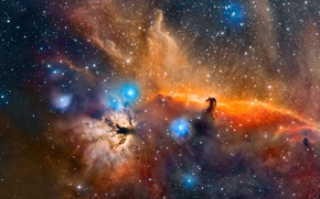 Wallpaper space, stars, The Horse Head nebula in the constellation Orion
