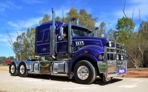 Wallpaper road, the sky, truck, trucks, Mack