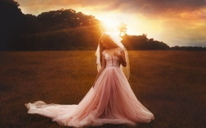 Picture the sun, the bride, TJ Drysdale