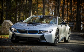 Picture BMW, White, Road, Forest