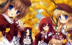 Picture autumn, anime, school, girlfriend, scolmatore