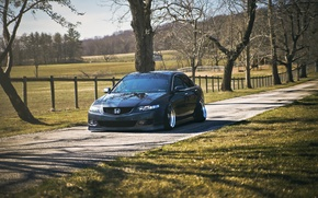 Picture Honda, accord, stance, Acura TSX