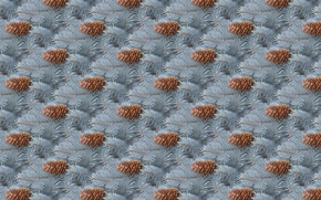 Picture holiday, background, winter, tree, sprig, texture, New year, bump, blue spruce
