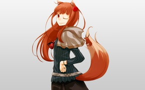 Wallpaper Holo, spice and wolf, Spice and wolf, The Wallpapers