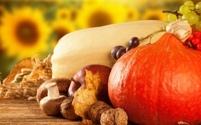 Picture mushrooms, Apple, pumpkin, fruit, vegetables, dry leaves, Kalina