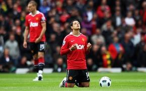 Picture Manchester United, manchester united, chicharito