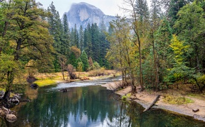 Wallpaper USA, stones, Yosemite National Park, rocks, Yosemite, stream, forest, autumn, CA, the bushes, trees, mountains