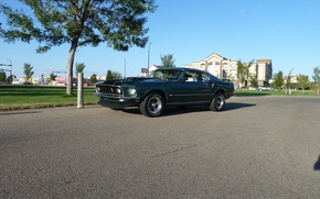 Picture Mustang, Ford, 1969, Green, Musclecar, Mach 1, Mach1