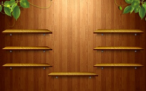 Picture greens, tree, texture, shelves