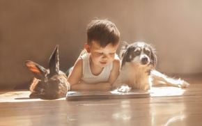 Picture dog, boy, rabbit, friends, owner, reading
