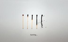 Picture life, paper, Matches, burn, the end, download, lie, smolder, burn