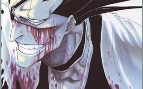 Picture face, blood, teeth, hairstyle, captain, Bleach, Bleach, grin, So Zaraki, shinigami, chalker, by Tite Kubo