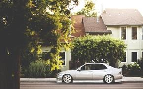Picture tree, street, home, lexus, drives, Lexus, is200, hellaflash