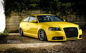 Picture audi, wheels, tuning, front, face, low, stance, clean, yelow