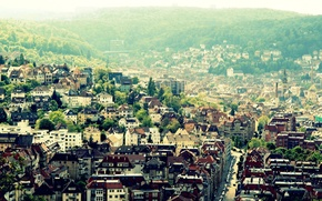 Picture trees, the city, valley, Europe