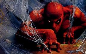 Picture fantasy, Marvel, comics, artwork, superhero, costume, drawing, Peter Parker, Spider Man, spiderwebs, fantasyart
