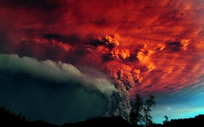 Wallpaper trees, ash, The volcano, the eruption, red sky