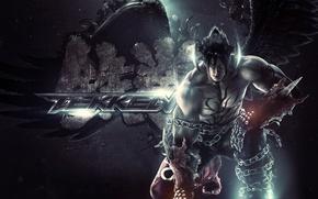 Picture the game, fighter, fighting, video game, tekken, devil jin