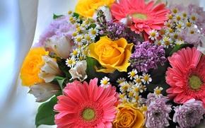 Wallpaper chamomile, lilac, bouquet, chrysanthemum, gerbera, Alstroemeria, roses