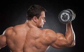 Picture man, back, muscular, shoulders, dumbbells, bodybuilder