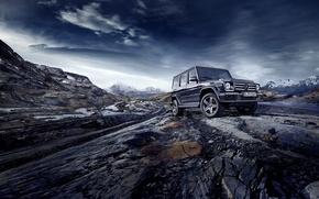 Picture Mercedes-Benz, Mercedes, W463, 2015, G 500