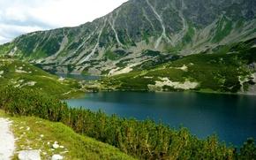 Picture landscape, mountains, nature, lake, Poland, Bukowina-Tatrzanska
