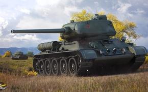 Picture field, autumn, grass, trees, tank, USSR, Soviet, average, World of Tanks, T-34-85