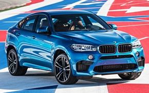 Picture BMW, BMW, F16, 2015, X6 M
