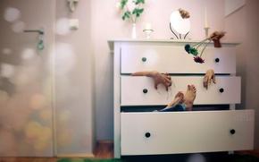 Picture feet, hands, wardrobe
