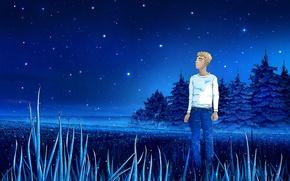 Picture field, summer, grass, stars, night, blue, dream, summer, guy, field, blue, night, stars, fog, Zenit, …