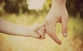 Wallpaper handle, kids, care, helplessness, daughter, serenity, protection, forest, hands, kids, hd wallpapers, grass, widescreen wallpapers, ...