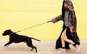 Picture dog, photoshoot, It, Anais Pouliot, Anais Pulio