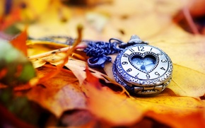Picture heart, watch, heart, clock, leaves, autumn, leaves, dial, arrows, love, hands, dial, autumn