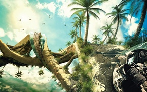 Picture palm trees, spiral, Motorcycle
