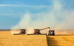 Picture field, the sky, harvest, cleaning, harvester