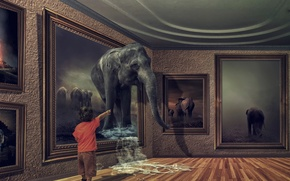 Picture elephant, picture, boy