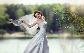 Picture happiness, dress, brunette, beauty, the bride, veil
