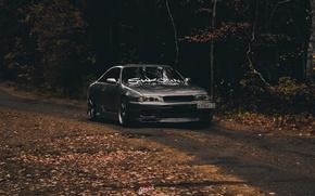 Picture car, nissan, skyline, gtr, autumn, r33