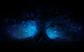 Picture energy, night, tree, magic, tenderness, glow, spirit, mystic, lights, mystery, horror, creativity, miracle